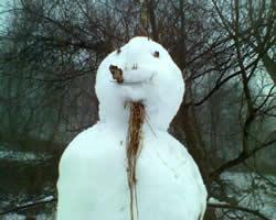 Snowdude